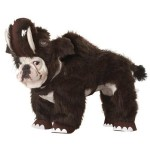 Dinosaur Costumes for Dogs