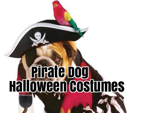 Pirate Dog Halloween Costumes