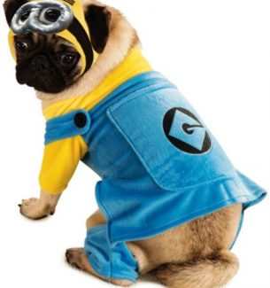 Despicable Me Dog Halloween Costumes