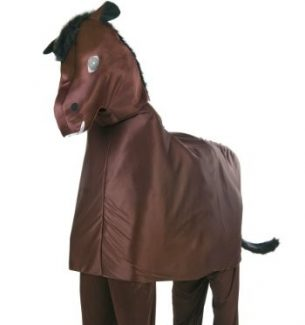 Two Person Horse Costumes