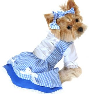 Dogs Wizard of Oz Halloween Costumes